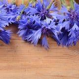 The beautiful cornflower on wooden background Stock Image