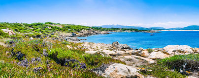 Beautiful costline with granite rocks and amazing azure water on Porto Pollo, Sardinia, Italy Royalty Free Stock Images