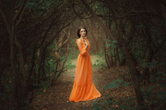 The beautiful countess in a long orange dress. Is walking in a green forest full of branches, elf, Princess in vintage dress, the queen of the forest royalty free stock photo