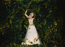 The beautiful countess. In a long pastel dress is walking in a green forest full of branches, elf, Princess in vintage dress, the queen of the forest royalty free stock images
