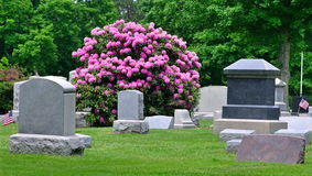 Beautiful Country Cemetery Royalty Free Stock Photography