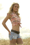 Beautiful country girl Royalty Free Stock Images