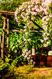 Beautiful Country House Garden Royalty Free Stock Image