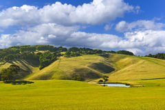Beautiful country landscape Stock Photos