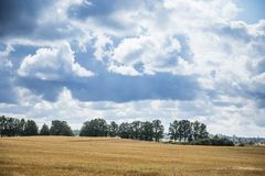 A beautiful country landscape with a wheat fields stretching into distance. Inspiring rural scenery at the end of summer stock image