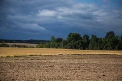 A beautiful country landscape with a wheat fields stretching into distance. Inspiring rural scenery at the end of summer stock photo