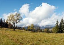 Beautiful country morning. Beautiful autumn morning near Carpathian village outskirts (Carpathian mountain, Ukraine). Three shots stitch image Royalty Free Stock Image