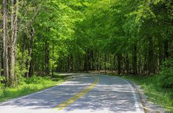 Beautiful Country Road stock photography