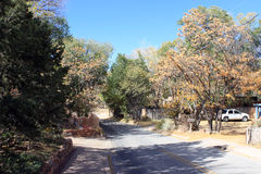 Beautiful Country Road. A country road going through fall foliage Stock Images