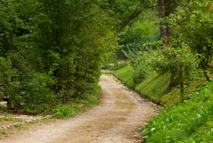 Beautiful country road Trentino Royalty Free Stock Image