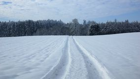 Beautiful country road in winter Royalty Free Stock Photography