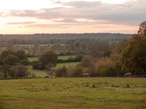 Beautiful country scene fields trees horizon sky red autumn sun Stock Photography