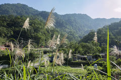 The beautiful Country side landscape of Wulai. District, Taiwan Stock Image