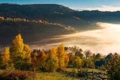 Beautiful countryside in autumn at sunrise. Trees in colorful foliage. fog in the valley above the village royalty free stock photography
