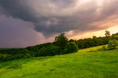 Beautiful countryside on a cloudy sunset. Trees on grassy hillside in evening light Stock Image