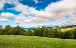 Beautiful countryside in early autumn. Grassy rolling hills with some trees. wonderful cloudscape on an azure sky above the landscape royalty free stock images