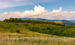 Beautiful countryside with forested rolling hills. Lovely Landscape of Carpathian mountains in early autumn season Royalty Free Stock Image