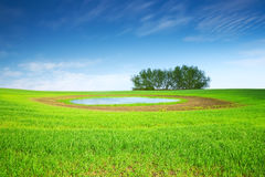 Beautiful countryside landscape Stock Photos