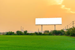Beautiful countryside landscape with a Blank billboard at sunset Royalty Free Stock Photos
