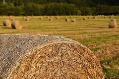 Beautiful countryside landscape. Hay bales in harvested fields. Czech Republic - Europe. Agricultural background - harvest. Stock Image