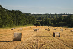 Beautiful countryside landscape image of hay bales in Summer fie Stock Image