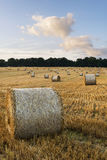 Beautiful countryside landscape image of hay bales in Summer fie Royalty Free Stock Image