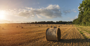 Beautiful countryside landscape image of hay bales in Summer fie Stock Photo