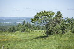 Beautiful countryside landscape Stock Photography