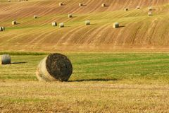 Beautiful countryside landscape near Siena in Tuscany, Italy. Round straw bales hay balls in harvested fields and blue sky. Royalty Free Stock Photography