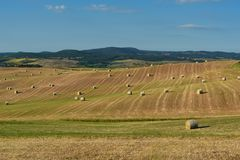 Beautiful countryside landscape near Siena in Tuscany, Italy. Round straw bales hay balls in harvested fields and blue sky. Royalty Free Stock Photo