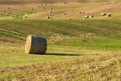 Beautiful countryside landscape near Siena in Tuscany, Italy. Round straw bales hay balls in harvested fields and blue sky. Royalty Free Stock Photos