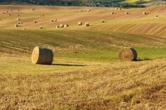 Beautiful countryside landscape near Siena in Tuscany, Italy. Round straw bales hay balls in harvested fields and blue sky. Stock Images