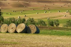 Beautiful countryside landscape near Siena in Tuscany, Italy. Round straw bales hay balls in harvested fields and blue sky. Royalty Free Stock Images