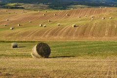 Beautiful countryside landscape near Siena in Tuscany, Italy. Round straw bales hay balls in harvested fields and blue sky. Stock Photos