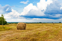 Beautiful countryside landscape. Stock Images