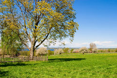 Beautiful countryside landscape Stock Photography