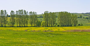 Beautiful countryside landscape in Transylvania Royalty Free Stock Photography