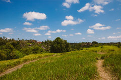 Beautiful countryside landscape, Ubud, Bali Stock Photos