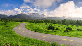 Beautiful countryside road in green field under blue sky Royalty Free Stock Image