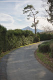 Beautiful countryside road with mountain la rhune rising up in basque country Stock Images