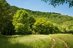 Beautiful countryside scene Royalty Free Stock Image