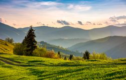 Beautiful countryside in springtime. Green grassy slopes of mountainous area in evening Stock Images