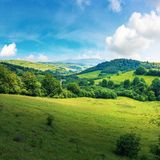 Beautiful countryside summer landscape stock photos