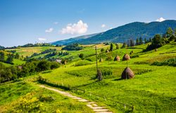 Beautiful countryside in summertime. Haystack on grassy hillsides of Carpathian mountain royalty free stock photo