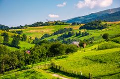 Beautiful countryside in summertime. Haystack on grassy hillsides of Carpathian mountain royalty free stock image