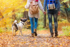 Beautiful couple in autumn nature Royalty Free Stock Photos