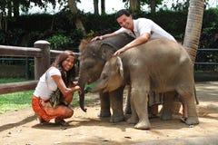 Beautiful couple with baby elephants Stock Photo
