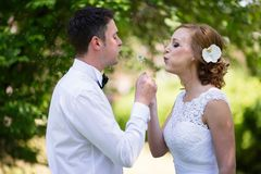 Beautiful couple blowing dandelions stock photography