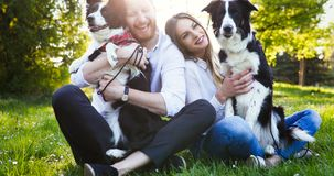 Beautiful couple cuddling and walking dogs outdoors Stock Photography