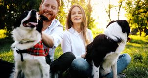 Beautiful couple cuddling and walking dogs outdoors royalty free stock photo